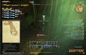 Final Fantasy 14 Tausend Löcher von Toto-Rak Photozelle